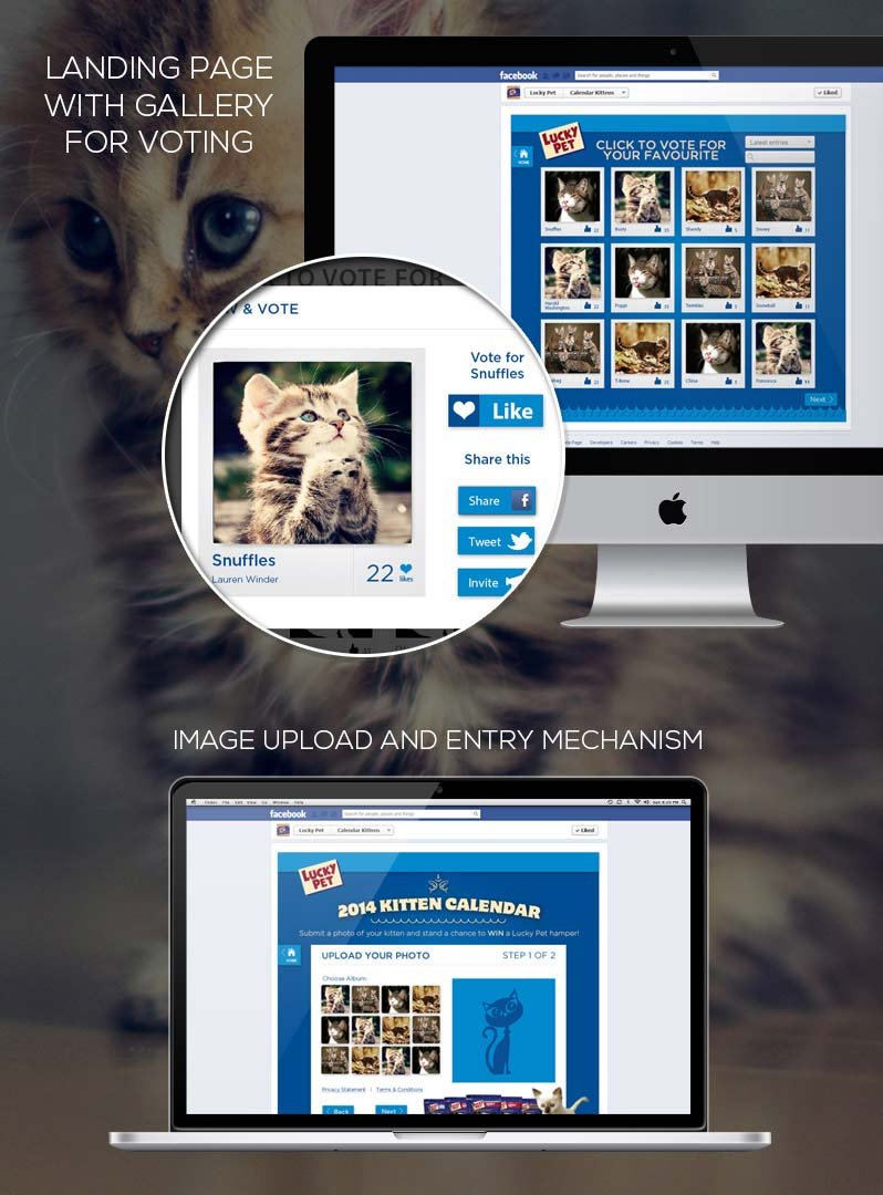 Lucky-Pet-Facebook-Application-Case-Study